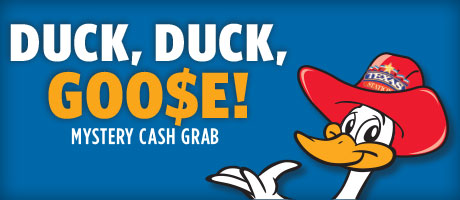 Duck poker coupon